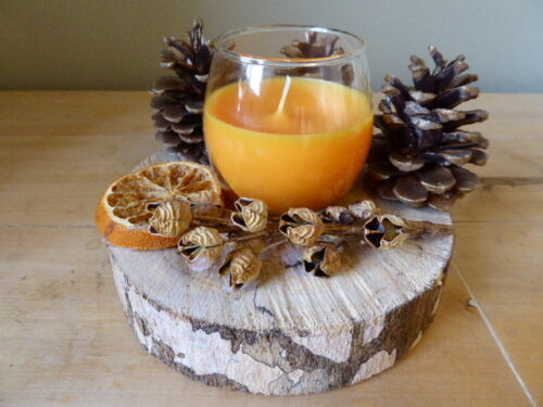 Gingerbread Scented Woodland Candle