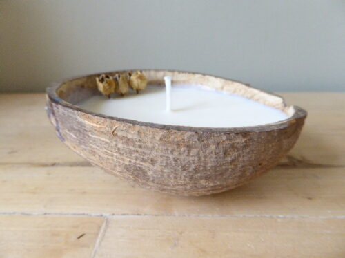 orange and cinnamon coconut shell soy candle